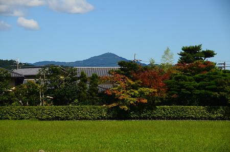 色づき始めたもみじと比叡山