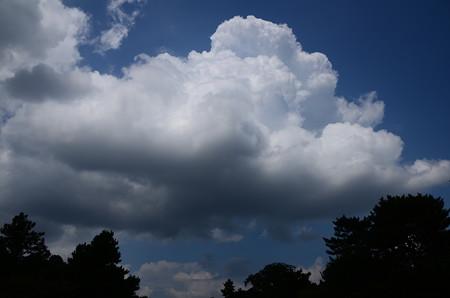 御苑を被う雲