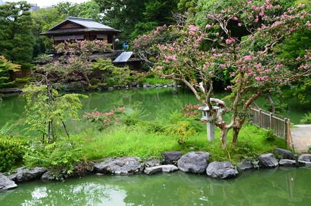 九条池と拾翠亭