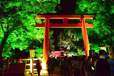 下鴨神社のライトアップ