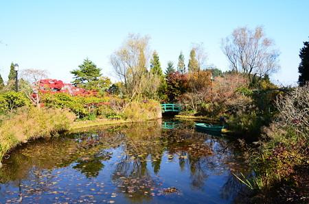 秋色を映すモネの池