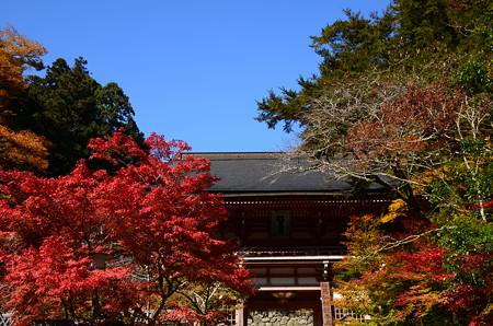 仁王門を彩る紅葉
