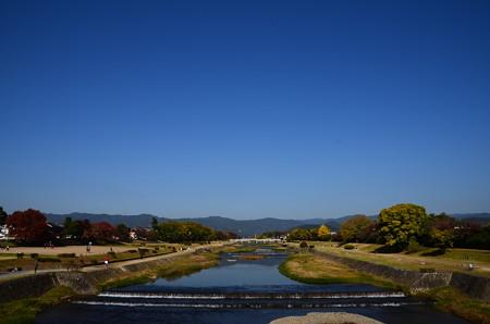 色付き進む賀茂川