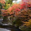 Photos: 指月橋からの眺め