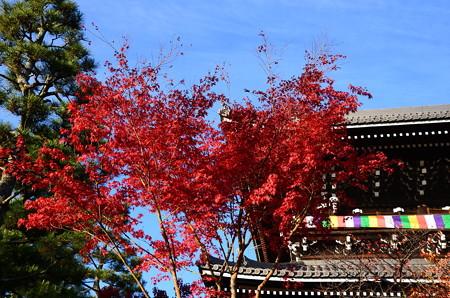 山門前の色付き