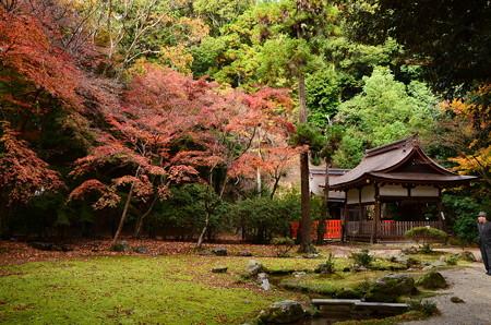 秋の渉渓園