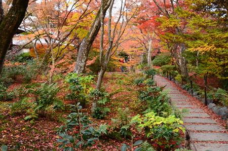 紅葉の宝筐院