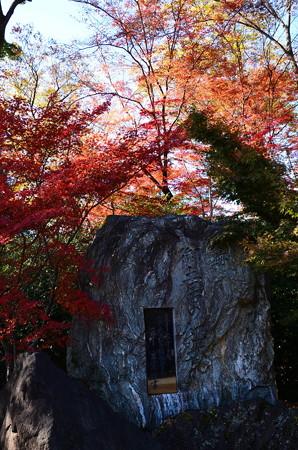 御土居入口の紅葉