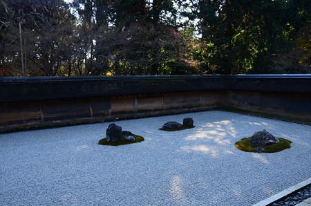 初冬の石庭