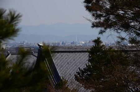 京都タワーも見えます~