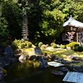 写真: 円照寺庭園