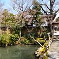写真: 新薬師寺庭園