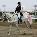 写真: 川崎競馬の誘導馬05月開催 誕生日記念レースVer-16-large