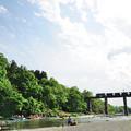 親鼻橋を渡る貨物列車