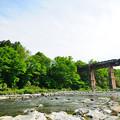 親鼻橋を渡るSL列車パレオエクスプレス