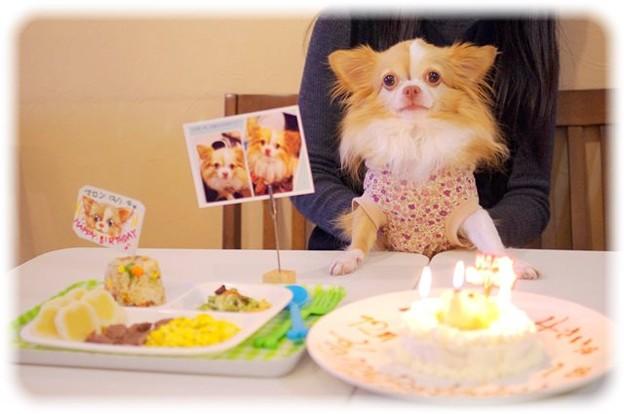 Photos: お誕生日おめでとう♪