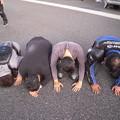 Photos: へなちょこライダー走行会