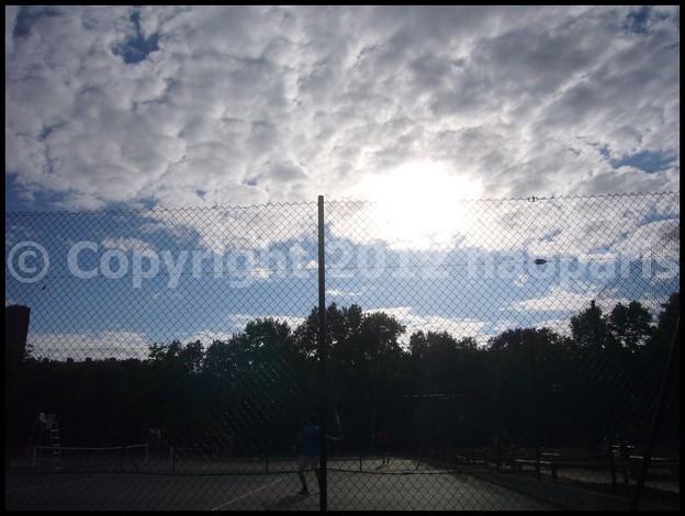 Photos: P3140274