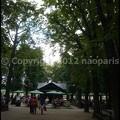 Photos: P3180212