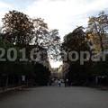 Photos: image124(1)