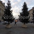 Photos: image244