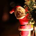 第115回モノコン Nervous Santa...^^v