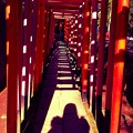 写真: プププッ…鳥居とAngel ♪