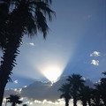 Photos: Mesquiteの朝