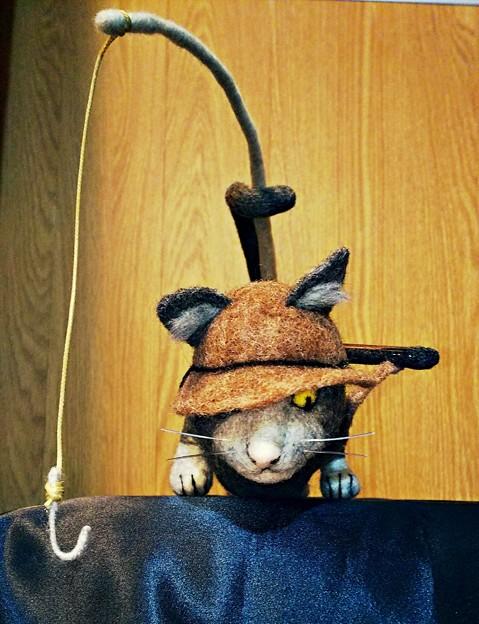 釣り猫(正面)