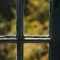 Photos: 窓越しの秋色