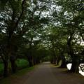 写真: 弘前城20160813
