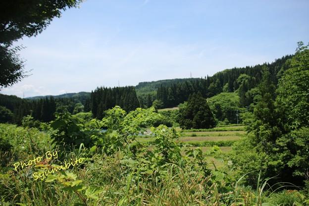 山形県鮭川村