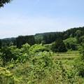 Photos: 山形県鮭川村