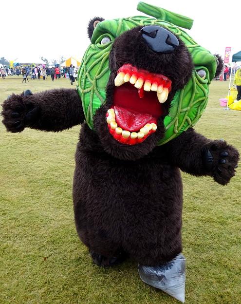 Photos: メロン熊