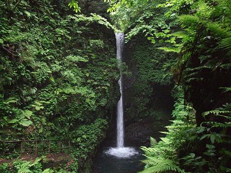 岩室の滝 2011.5.28-2