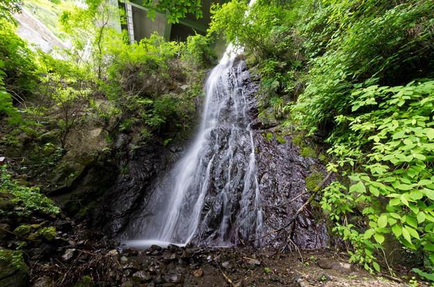 Photos: 下田寺沢不動の滝 2012.6.6-2
