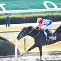 Photos: ★2017.1.7京都競馬場3Rウォーターマーズ&菱田裕二騎手