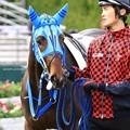 Photos: ★2017.1.17京都競馬場4Rマイブルーヘブン&幸英明騎手