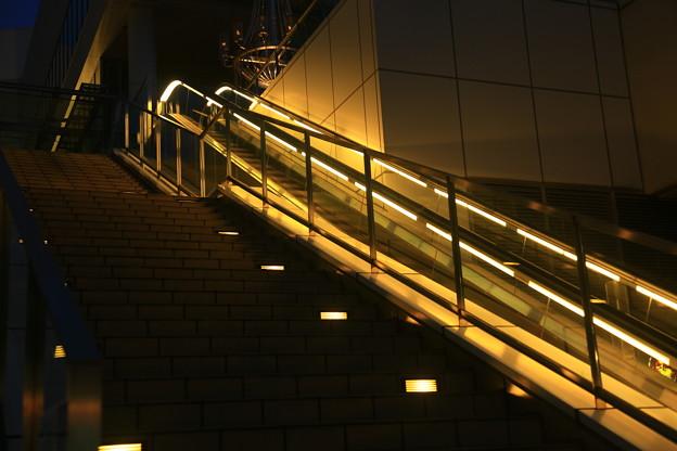 夜光の階段