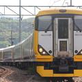E257系500番台マリNB-16編成 快速山梨富士号