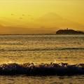 打ち寄せる波と富士山