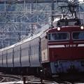 集約臨 EF81-81+24系12両