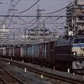 武蔵野貨物線 EF66-11+コキ  2003年10月26日 広島車両所一般公開ヘッドマーク