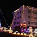 写真: クリスマス・イルミネーション(兵庫県小野市)(1)