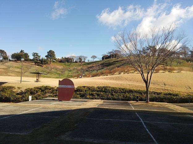 みとろ観光果樹園(兵庫県加古川市)(7)