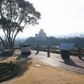 男山から見た姫路城(2)