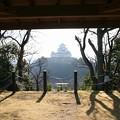 男山から見た姫路城(3)