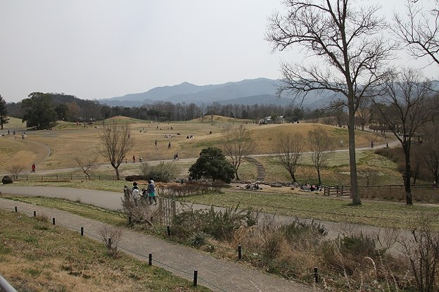 国営讃岐まんのう公園(9)