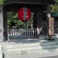 写真: 長谷寺 四萬六千日