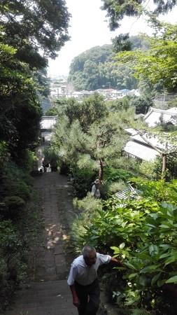 岩殿寺 奥の院の途中からの眺め